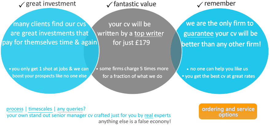 Order CV writing services